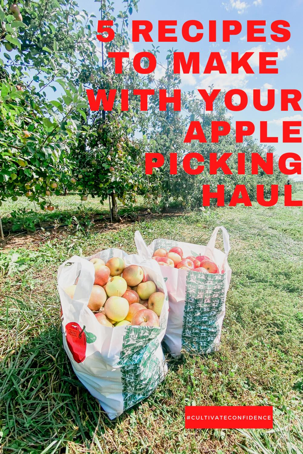 5 Recipes to Make with Your Apple Picking Haul